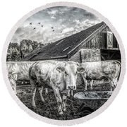 The Cows Came Home Black And White Round Beach Towel