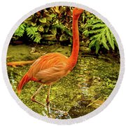 The Flamingo Round Beach Towel