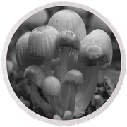 The Funghi Family Round Beach Towel