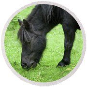 The Grass Is Greener Here. The Black Pony Round Beach Towel
