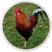 The Pose Of The Rooster Round Beach Towel