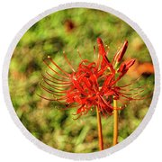The Spider Lily Round Beach Towel