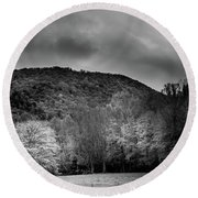 The Yellow Tree In Black And White Round Beach Towel