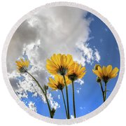 Things Are Looking Up - Wide Format Round Beach Towel
