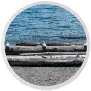 Three Gulls On A Log Round Beach Towel