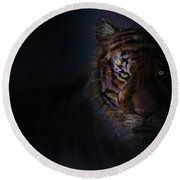 Tiger In The Dark Round Beach Towel by Darren Cannell