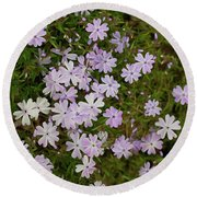 Tiny Phlox Round Beach Towel by Emily Johnson