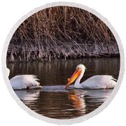 To Pelicans Trolling For Fish Round Beach Towel