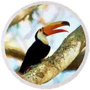 Toucan On A Tree Round Beach Towel