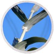 Towering Big Long Leaves Round Beach Towel