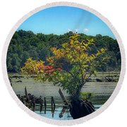 Tree In Mallows Bay Round Beach Towel