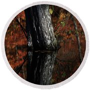 Tree Reflects In The Pond Round Beach Towel