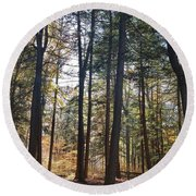 Trees And Shadows 2 Round Beach Towel