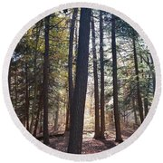 Trees And Shadows  Round Beach Towel
