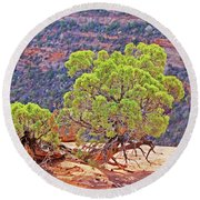 Trees Plateau Valley Colorado National Monument 2871 Round Beach Towel