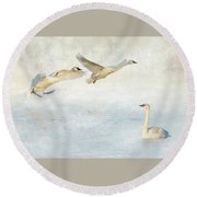 Trumpeter Swans - Don't Land On Me Round Beach Towel