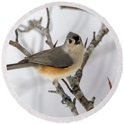 Tufted Titmouse Winter Tranquility Round Beach Towel