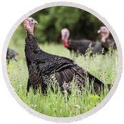 Turkey Flock Round Beach Towel