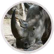 Up Close Look At The Face Of A Rhinoceros Round Beach Towel