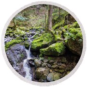 Vivid Green In The Black Forest Round Beach Towel