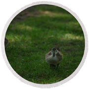 Waddling Ducklings Round Beach Towel
