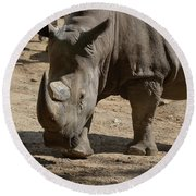 Walking Rhino With One Large Horn And One Small Horn Round Beach Towel