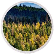 Washington - Gifford Pinchot National Forest Round Beach Towel