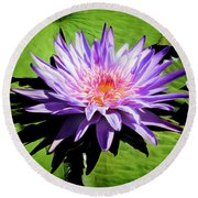 Water Lily 7 Round Beach Towel