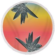 Water Lily Duo Round Beach Towel