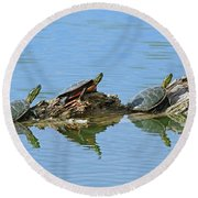 Western Painted Turtles Round Beach Towel