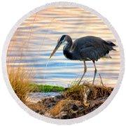 Wheeler Oregon - Great Blue Heron Round Beach Towel