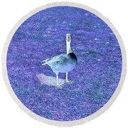 Where's Mine - The Blue Goose Round Beach Towel