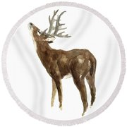 White Tailed Deer Stag With Head Tilted Upwards Round Beach Towel