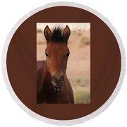 Wild Horse Luke Round Beach Towel