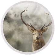 Wild Nature - Stag Round Beach Towel