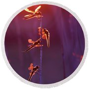 Winged Wonders - Dragonflies At Sunset Round Beach Towel
