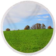 Winter Wheat In October In Southern Ontario Round Beach Towel