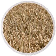 Wonderful Wheat Round Beach Towel