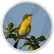 Yellow-breasted Chat Sings Round Beach Towel