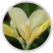Yellow Canna Lily Round Beach Towel