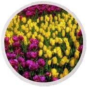Yellow Star Tulips Round Beach Towel