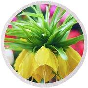 Yellow Tulip Close Up Round Beach Towel