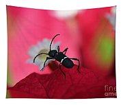 Black Bug Tapestry