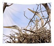 Blue Heron Rookery 7214 Tapestry