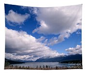 Clouds Over Lake Quinault Tapestry