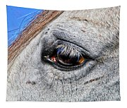 Eye Of A Horse Tapestry