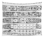 Inquiry In The Loss Of The Titanic Cross Sections Of The Ship  Tapestry