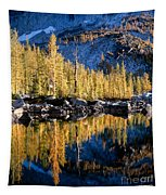 Larch Tree Reflection  Tapestry