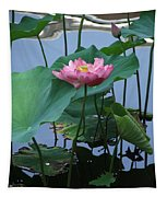 Lotus Flower At Calloway Tapestry
