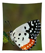 Red Pierrot Butterfly Tapestry